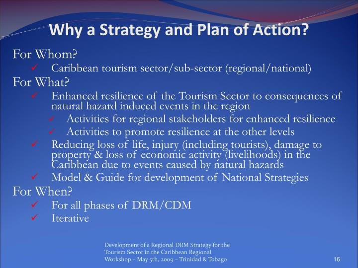 Why a Strategy and Plan of Action?