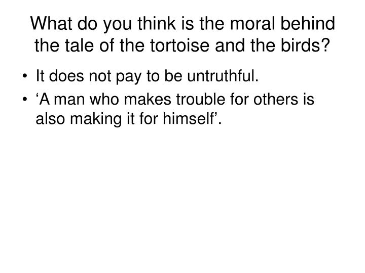 What do you think is the moral behind the tale of the tortoise and the birds