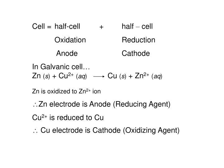 Cell = half-cell + half