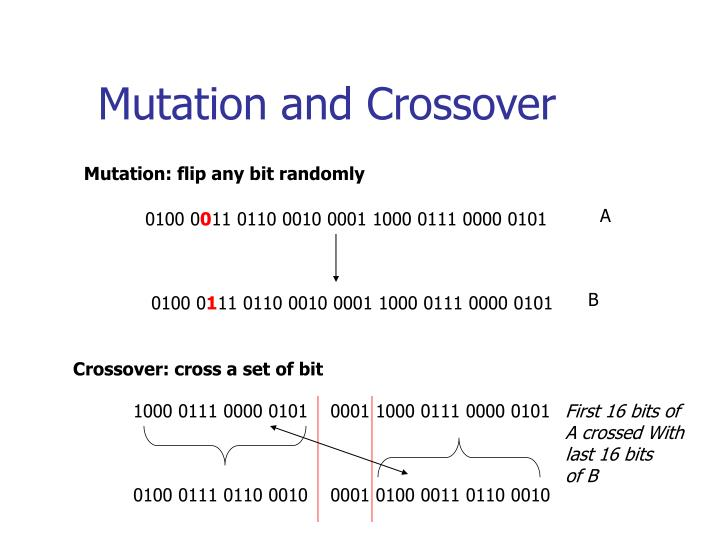 Mutation and Crossover