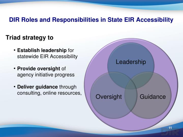 DIR Roles and Responsibilities in State EIR Accessibility
