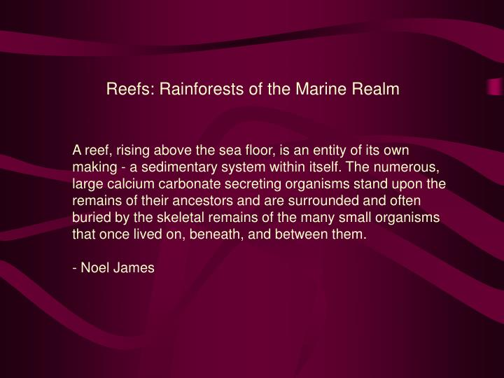 Reefs: Rainforests of the Marine Realm
