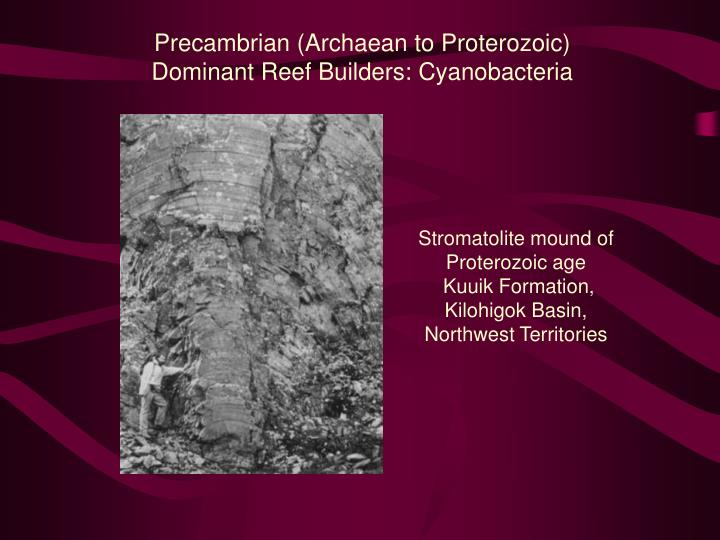 Precambrian (Archaean to Proterozoic)