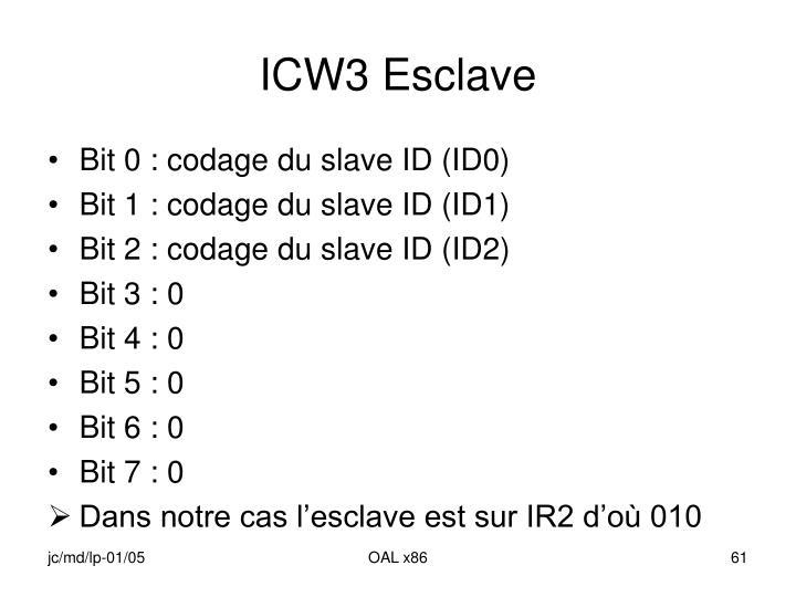ICW3 Esclave