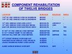 component rehabilitation of twelve bridges