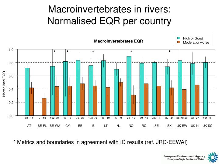 Macroinvertebrates in rivers: