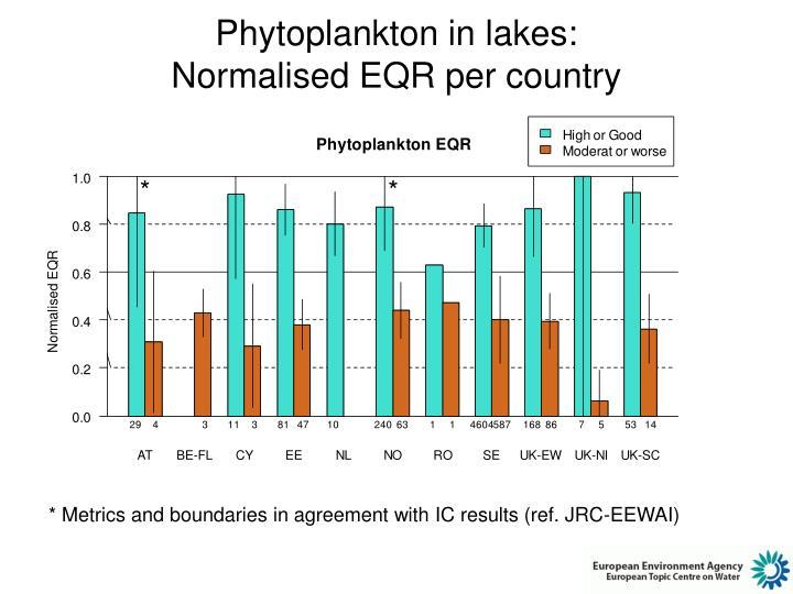 Phytoplankton in lakes: