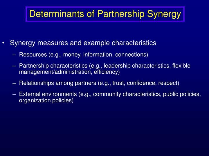 Determinants of Partnership Synergy