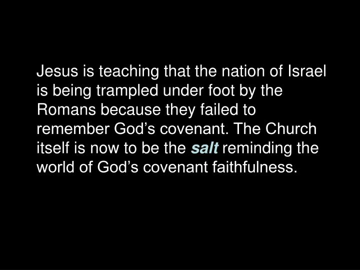 Jesus is teaching that the nation of Israel is being trampled under foot by the Romans because they failed to remember God's covenant. The Church itself is now to be the