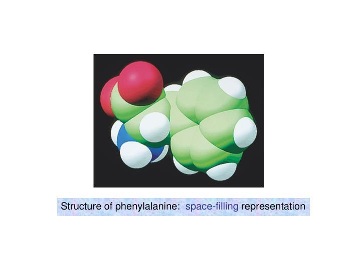 Structure of phenylalanine: