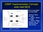 gsmt implementation concept wide field mos