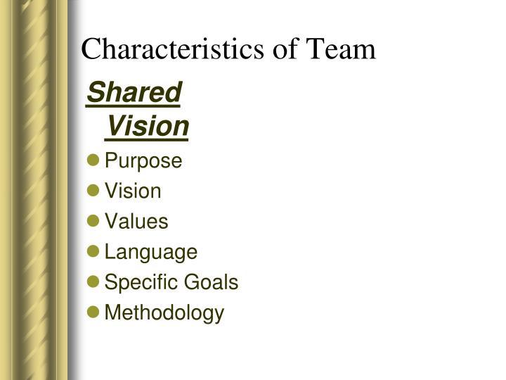 Characteristics of Team