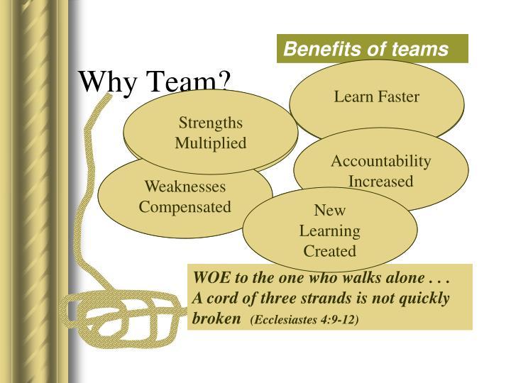 Why Team?