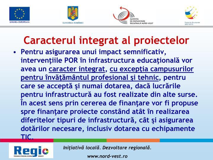 Caracterul integrat al proiectelor