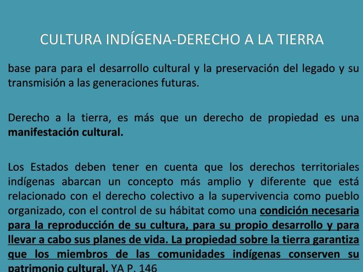 CULTURA INDÍGENA-DERECHO A LA TIERRA