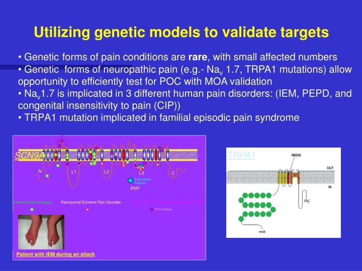 Utilizing genetic models to validate targets