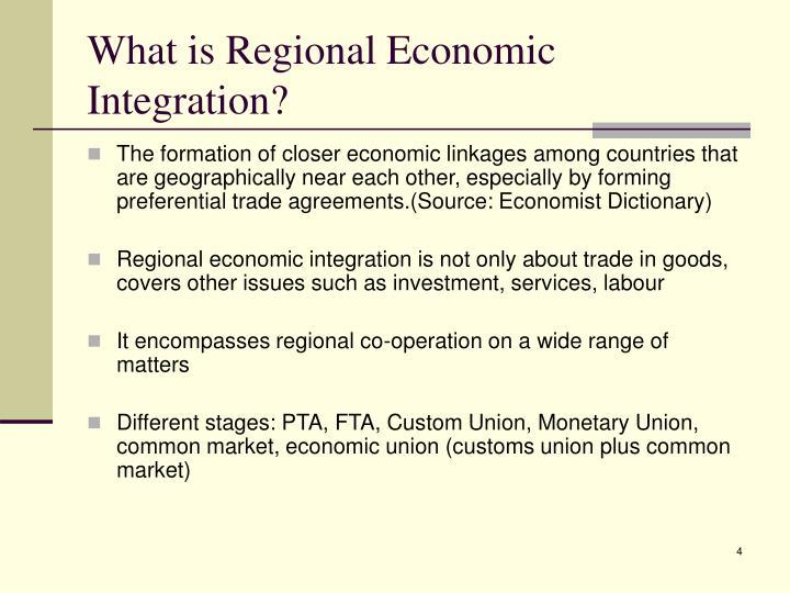 What is Regional Economic Integration?