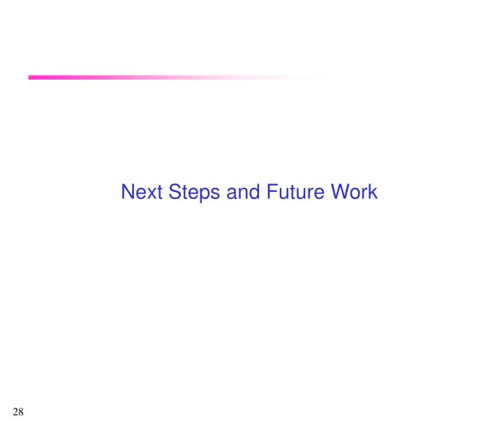 Next Steps and Future Work
