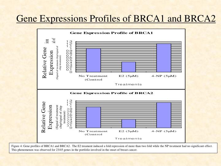 Gene Expressions Profiles of BRCA1 and BRCA2