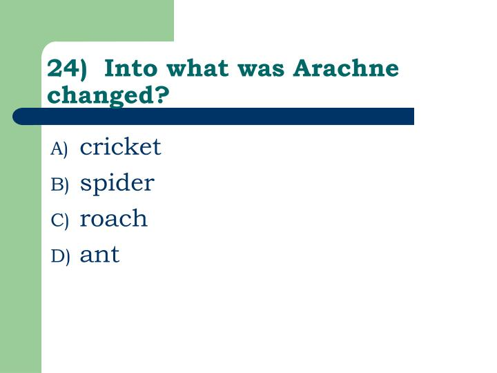 24)  Into what was Arachne changed?