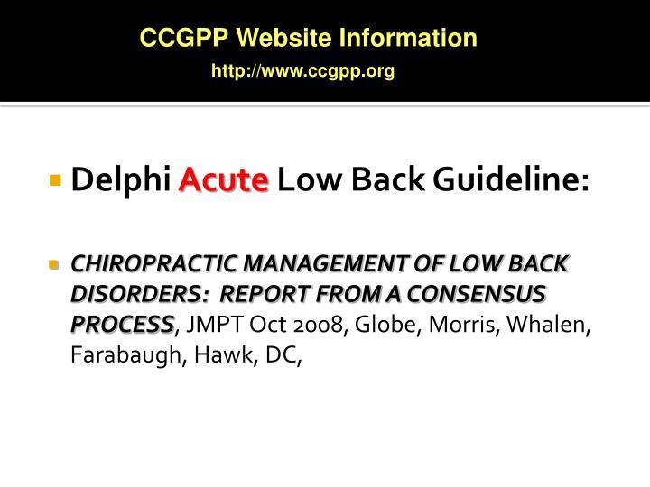 CCGPP Website Information
