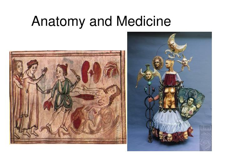Anatomy and medicine