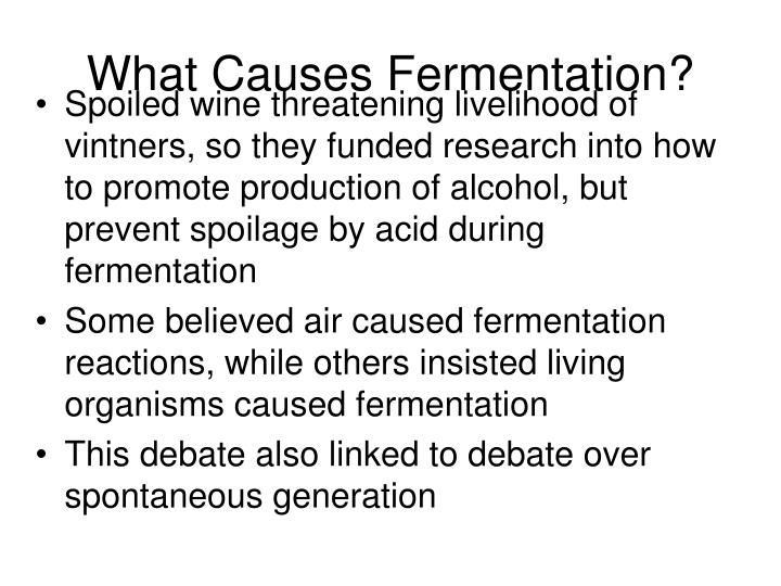 What Causes Fermentation?
