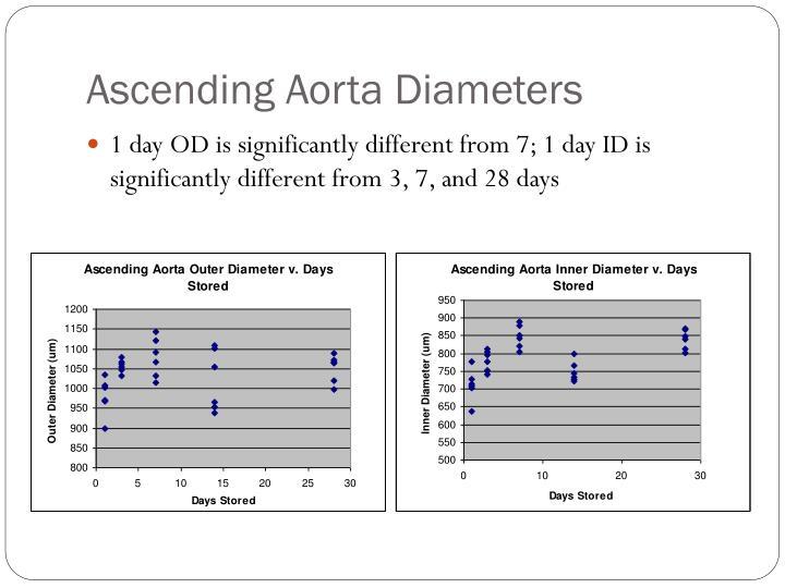 Ascending Aorta Diameters