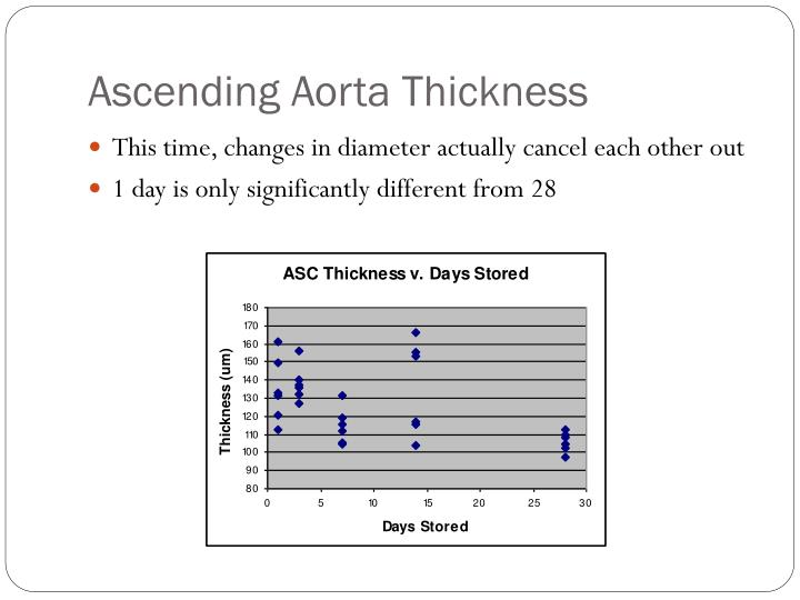 Ascending Aorta Thickness