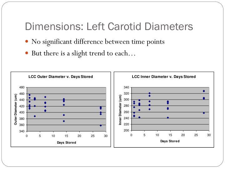 Dimensions: Left Carotid Diameters