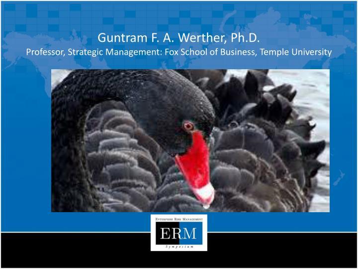 Guntram F. A. Werther, Ph.D.