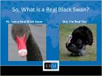 so what is a real black swan