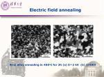 electric field annealing1