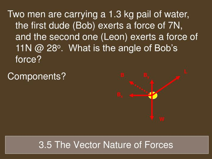 Two men are carrying a 1.3 kg pail of water, the first dude (Bob) exerts a force of 7N, and the second one (Leon) exerts a force of 11N @ 28