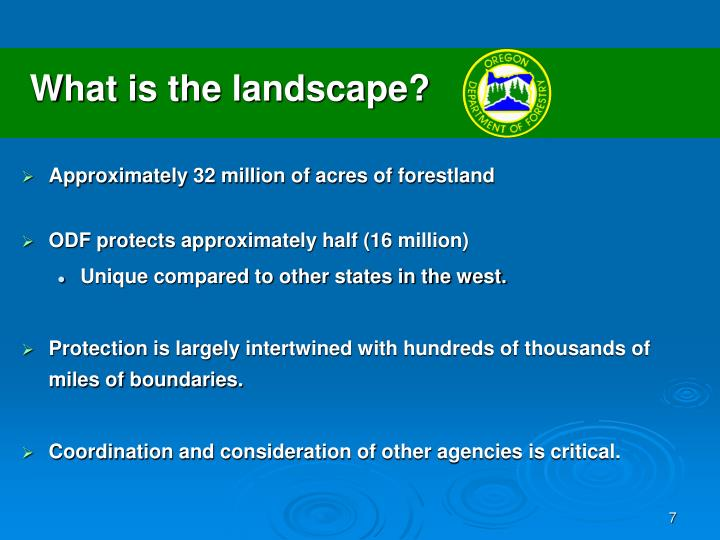 What is the landscape?