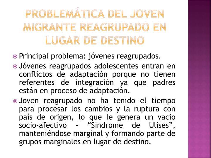 Problemática del joven migrante reagrupado en lugar de destino
