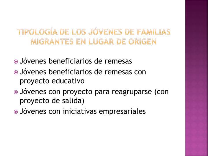 Tipología de los jóvenes de familias migrantes en lugar de origen