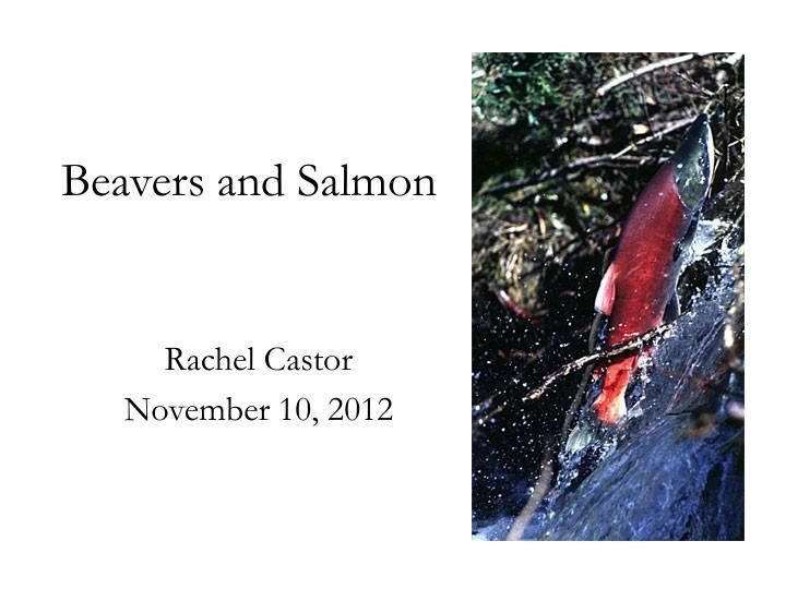 beavers and salmon