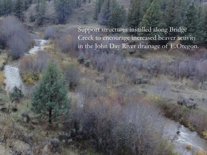 Support structures installed along Bridge Creek to encourage increased beaver activity in the John Day River drainage of E.Oregon.