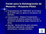fondo para la reintegraci n de menores proyecto piloto