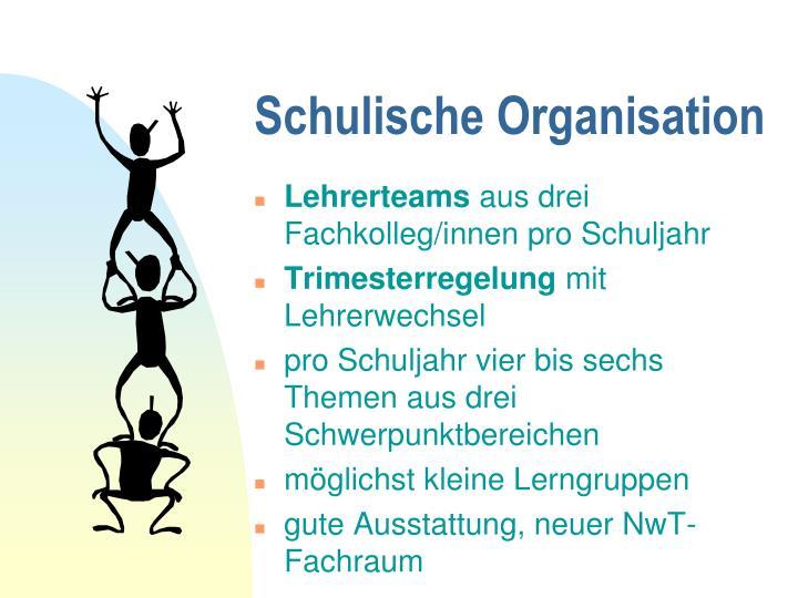 Schulische Organisation
