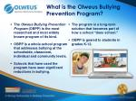 what is the olweus bullying prevention program