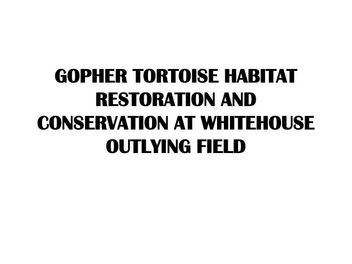 GOPHER TORTOISE HABITAT RESTORATION AND CONSERVATION AT WHITEHOUSE OUTLYING FIELD