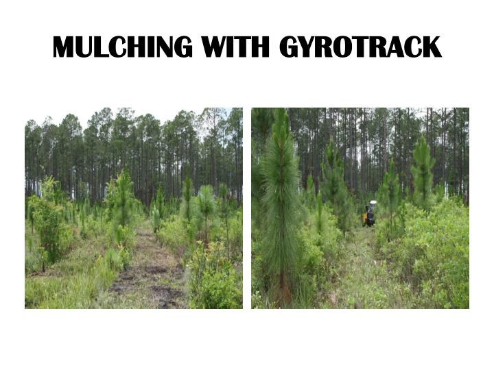 MULCHING WITH GYROTRACK