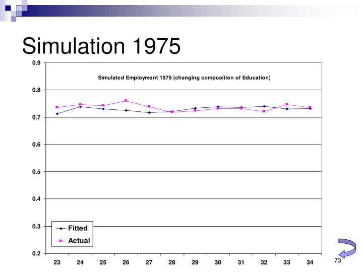 Simulation 1975
