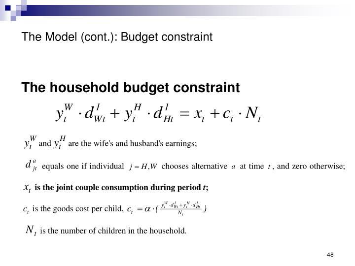 The Model (cont.): Budget constraint