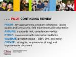 pilot continuing review