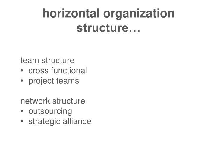 horizontal organization structure…