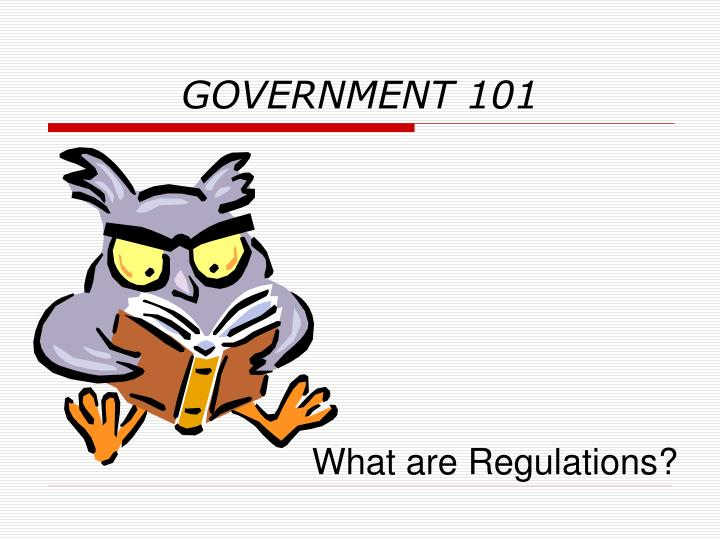 GOVERNMENT 101