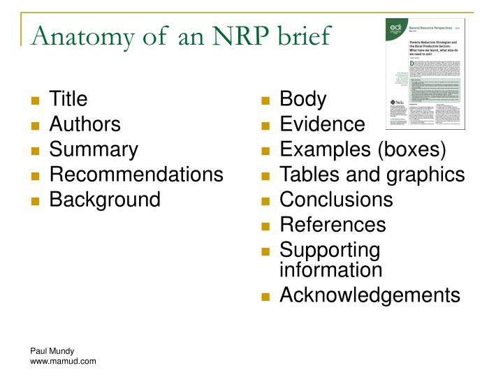 Anatomy of an NRP brief